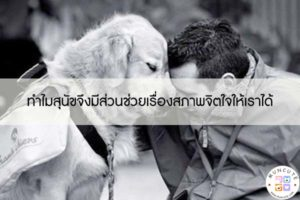ทำไมสุนัขจึงมีส่วนช่วยเรื่องสภาพจิตใจให้เราได้ #ทาสหมา
