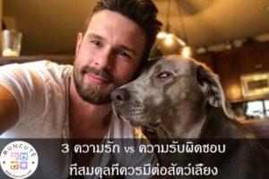 3 ความรัก vs ความรับผิดชอบที่สมดุลที่ควรมีต่อสัตว์เลี้ยง