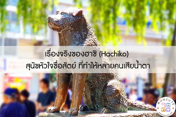 เรื่องจริงของฮาชิ (Hachiko) สุนัขหัวใจซื่อสัตย์ ที่ทำให้หลายคนเสียน้ำตา