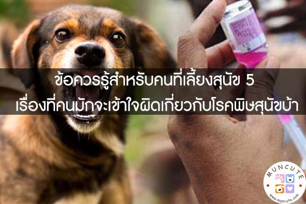 ข้อควรรู้สำหรับคนที่เลี้ยงสุนัข 5 เรื่องที่คนมักจะเข้าใจผิดเกี่ยวกับโรคพิษสุนัขบ้า